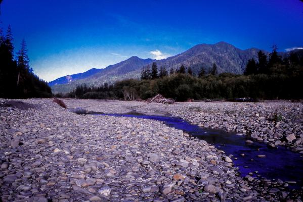 Grand view of the Queets River when it's running low during the summer season. Photo by Bryant Carlin