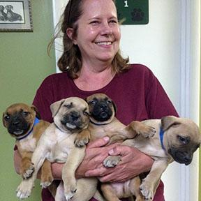 Laurie Green started the Southern Alliance for People and Animal Welfare 20 years ago. Photo courtesy of  SAFPAW