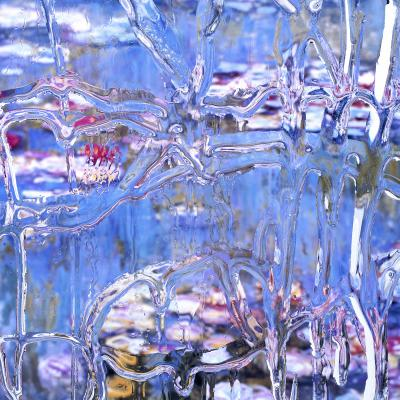 """After Claude Monet: Nympheas 1, 1916"" by Carol Inez Charney, chromogenic print face-mounted to acrylic. ""Resolution"" show."
