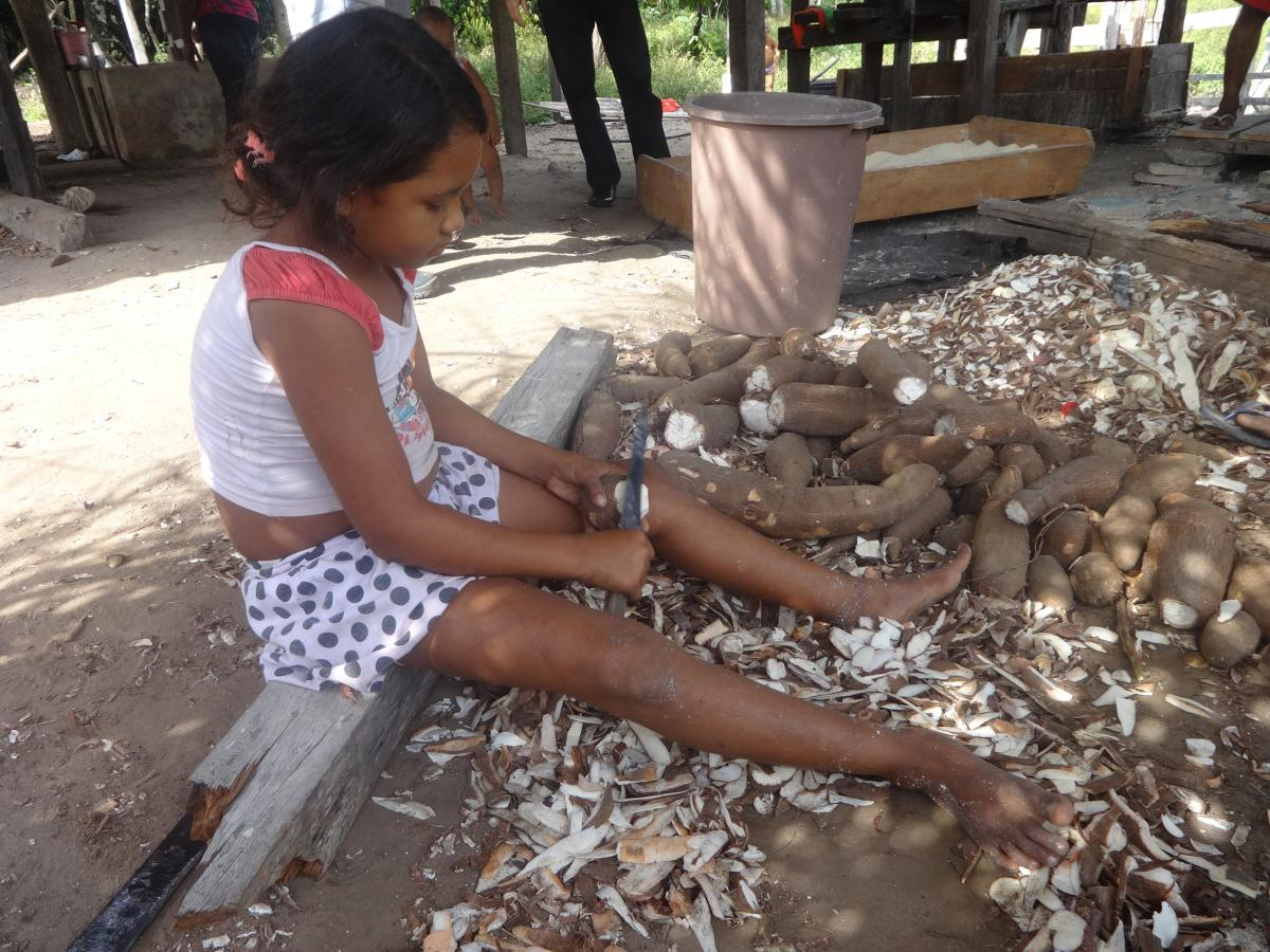 A little girl peels manioc to make flour in Acará, in the state of Pará, in the northeast of Brazil's Amazon region. In the rural sectors of Brazil, it is a deeply-rooted custom for children to help with family farming, on the grounds of passing on knowle