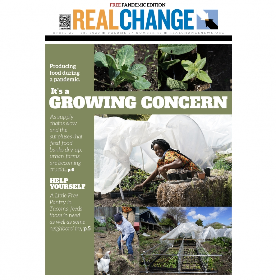 Things are growing at Nurturing Roots farm in Beacon Hill. Since the pandemic, food supply chains have broken, and food banks are suffering the consequences. Small, urban farms are part of the answer to feeding the hungry. The story begins on page 6. Phot