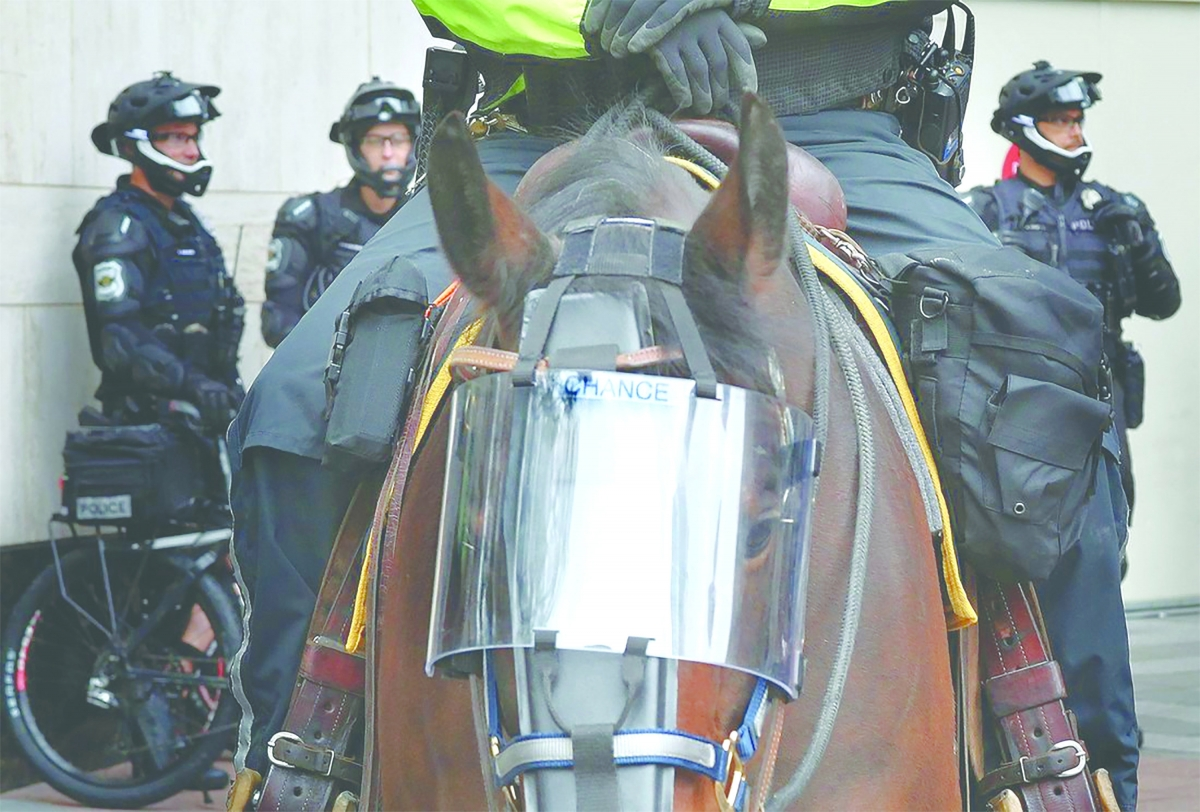 Councilmembers are considering limits to city executive pay and selling SPD's horses and stables in an effort to defund the police.