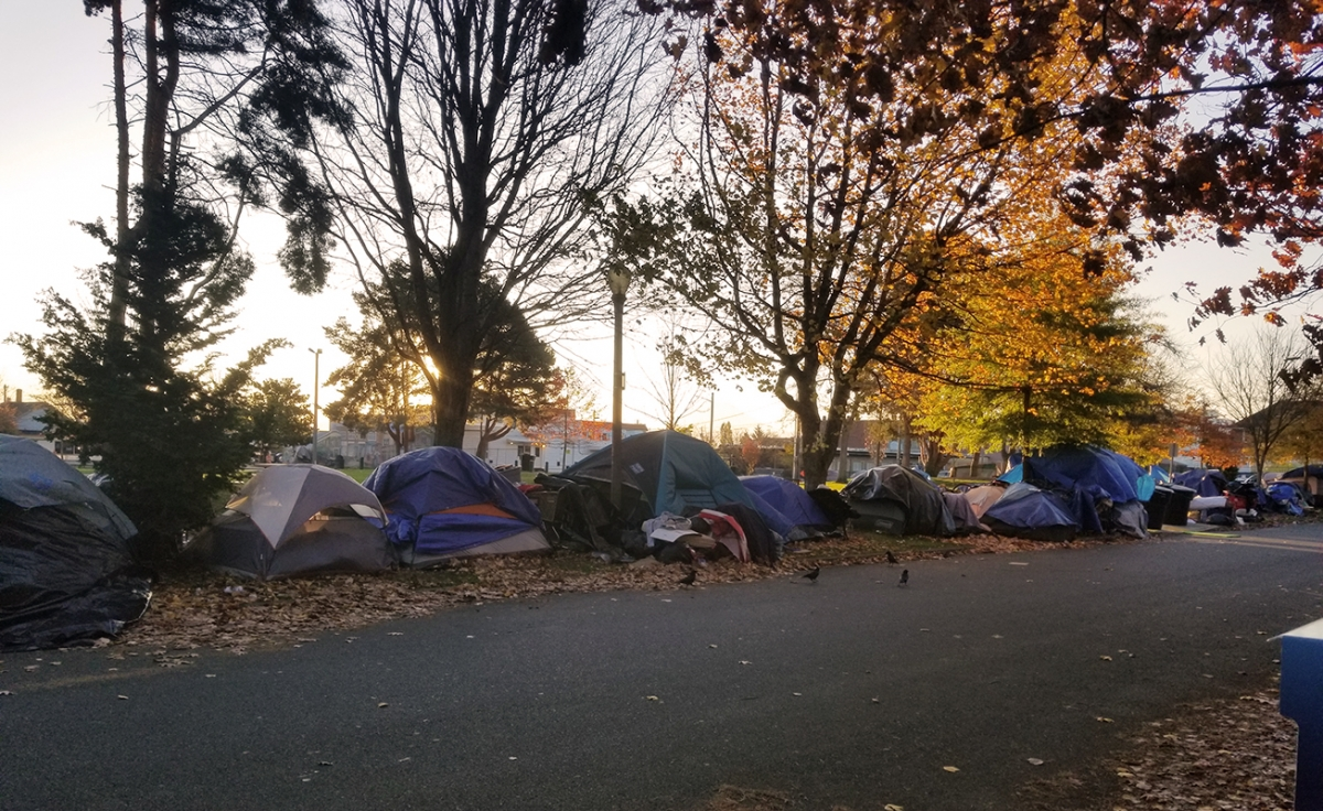 Tents line the sidewalk next to People's Park in Tacoma. The city plans to ban structures with walls, like tents, in December. Photo by Ashley Archibald