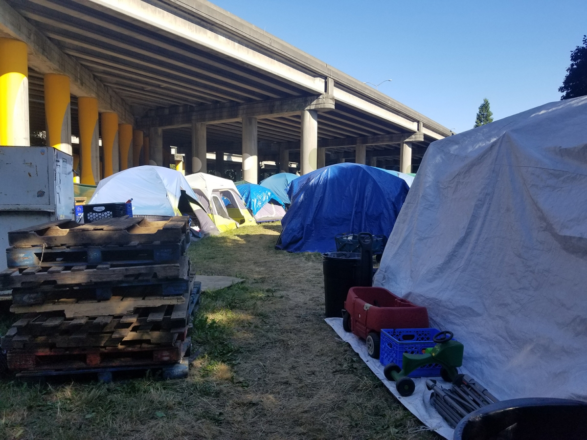 A line of storage tents set up on the east side of the Tent City 3 encampment in Ravenna. The camp moved to the chunk of public land after leaving their previous church host without an alternative location. They will now move to a church site in Tukwila.