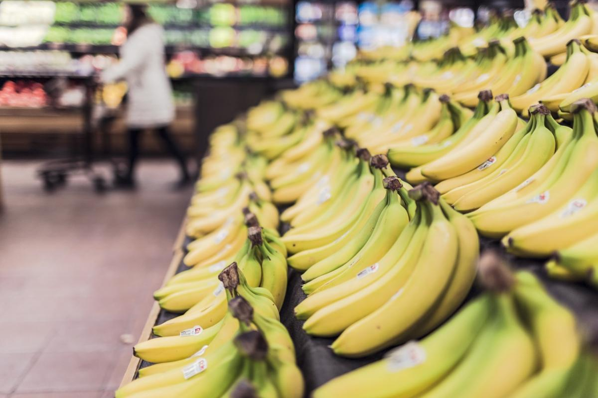 In the United States, close to 40 percent of food that is perfectly good and edible is wasted throughout the food supply chain.