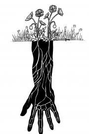 Illustration by Julia Wald