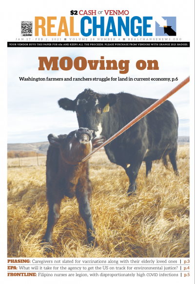 The Hendersons' Flying Box Ranch in Central Washington is welcoming newborn calves this winter, including this one pictured soon after birth with its mom. The story and more photos — all by Real Change Reporter-at-Large Samira George — are on page 6.