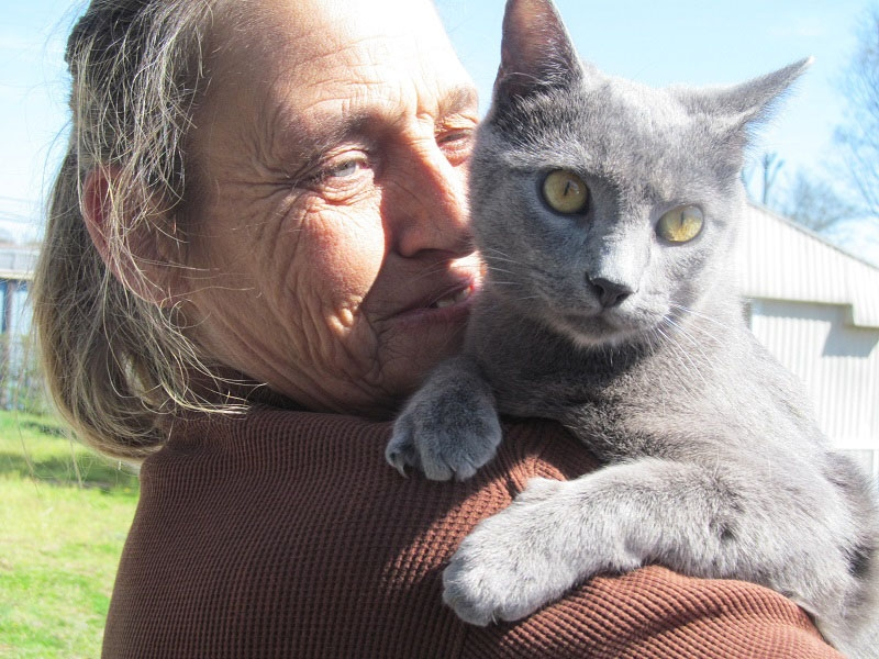 SAFPAW has helped countless people who are homeless pet owners. Photo courtesy SAFPAW