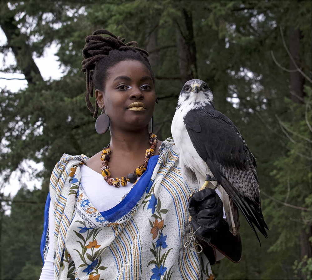 """Aimee and Alfred, the African Augur Buzzard,"" giclée print, 2018 by C. Davida Ingram."