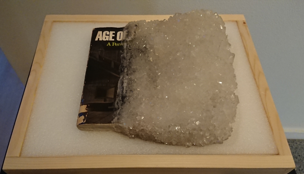 A book with sugar crystals visitors can touch is on display outside the installation. Photo by Lisa Edge